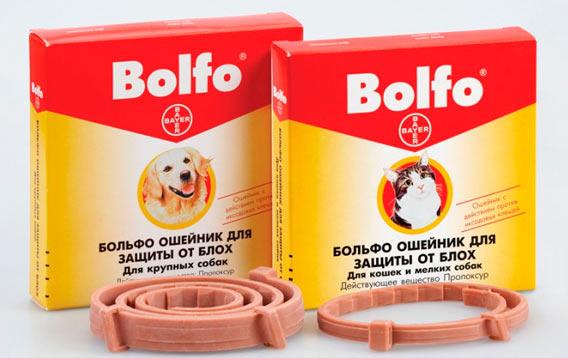 Ошейник для кошек Bolfo